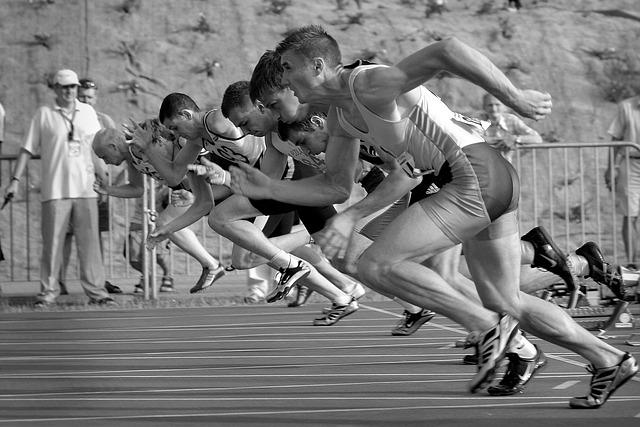závodníci v běhu