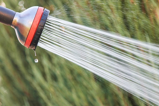 Solární sprcha ohřívá vodu zdarma